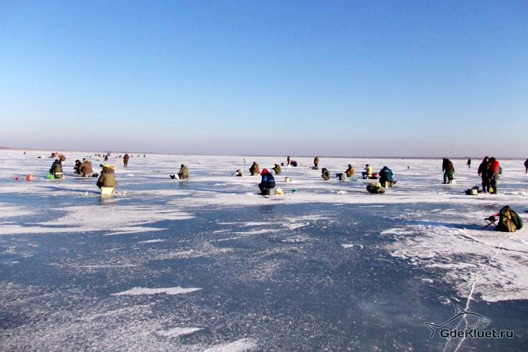 Зимняя рыбалка на цимлянском