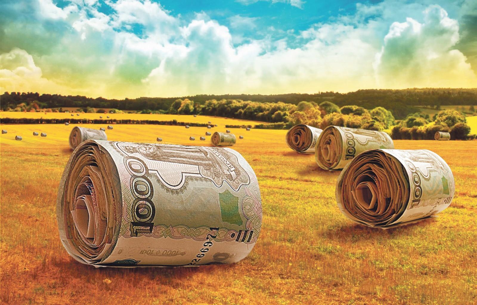 Банк хоум кредит г владимир
