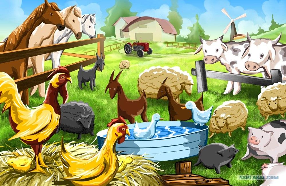 Рисунок сельского хозяйства