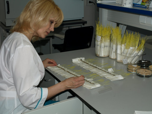 В учебном пособии представлены лабораторные работ