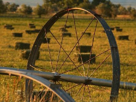 Россия присоединяется к Соглашению о создании Международного фонда сельхозразвития