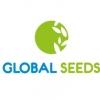 Аватар пользователя Глобал Сидс
