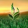 Аватар пользователя AgriExport