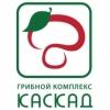 Аватар пользователя Семеньков Николай