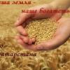 Аватар пользователя Зерно Татарстана