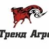 Аватар пользователя Ольга Ивушкина