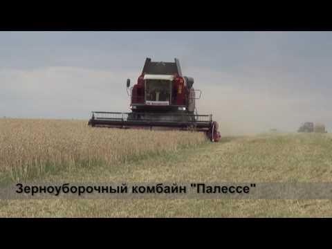 Как два хозяйства в Октябрьском районе Ростовской области увеличивают намолоты зерна
