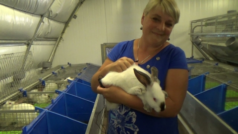 Фермер из Краснодарского края о тонкостях кролиководческого бизнеса