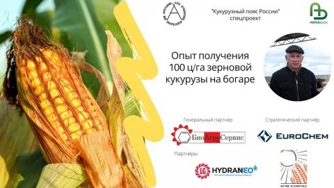 Опыт получения 100 ц/га зерновой кукурузы на богаре