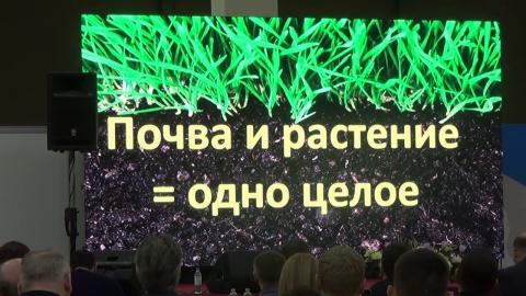 """No-till. Пять принципов здоровья почвы. Опыт """"Сезам-Агро"""" (Крым)"""