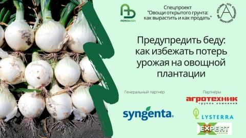 Предупредить беду: как избежать потерь урожая на овощной плантации
