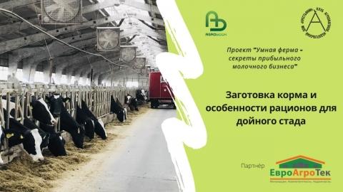 Заготовка корма и особенности рационов для дойного стада. Умная ферма: прибыльный молочный бизнес