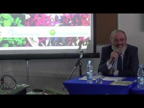 Опыт выращивания и рентабельность новых сортов нута Волгоградской селекции