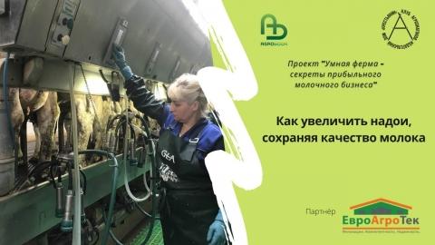 Как увеличить надои, сохраняя качество молока. Умная ферма: секреты прибыльного молочного бизнеса