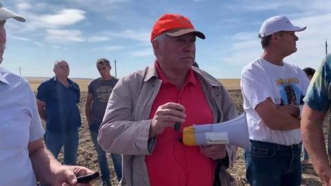 Плантация нута, посещение полей хозяйства. День поля ноутил в АО «Усть-Медведицкое»