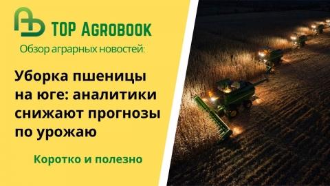 Уборка пшеницы на юге: аналитики снижают прогнозы по урожаю. TOP Agrobook: обзор аграрных новостей