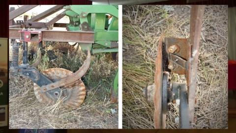 Опыт применения сошника после очёсывающей жатки. День поля ноутил в АО «Усть-Медведицкое»