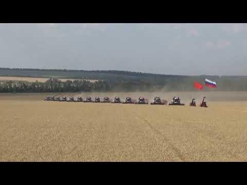 Парад комбайнов в честь рекордного урожая в СПК колхоз имени С.Г. Шаумяна