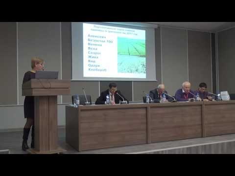 Семеноводство пшеницы в КНИИСХ им. П.П. Лукьяненко