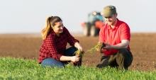 Краснодарские аграрии получили от РСХБ 14,5 млрд рублей с начала 2020 года