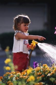 Шланги для полива на даче – оцениваем и выбираем