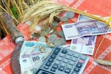 Новосибирские фермеры будут возвращать субсидии при плохих результатах