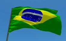 Россельхознадзор запретил ввоз мясопродуктов с двух предприятий Бразилии и одного - Парагвая, сообщает пресс-служба ведомства.