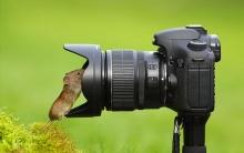 Agrobook.ru подвел итоги розыгрыша фотоапппарата