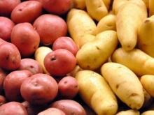 ОАО «Вологодский картофель»