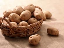 Россельхознадзор может вернуть голландскую картошку в Россию