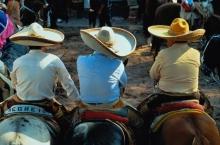 Если фермер понёс убытки - отвечать за это должно государство. Так считают в Мексике