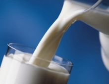 В России увеличилось производство молока