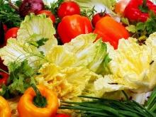 Новый тепличный комплекс в Волгоградской области будет производить более 9 тысяч тонн овощей год