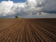 Чтобы получить землю, потребуется сначала создать КФХ