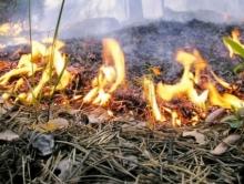 На Ставрополье пожарные спасали поля с пшеницей от огня