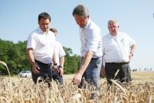 «Нам нужен, условно, триллион...» Как сложился аграрный год «под знаком» министра Ткачёва?
