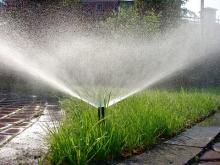 В Крыму опасаются за сельское хозяйство из-за недостатка воды