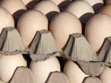 На Ставрополье сократится производство яиц