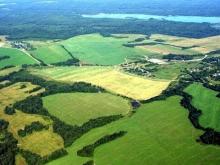 Госдуме предложили бесплатно раздавать землю в заброшенных сёлах и деревнях