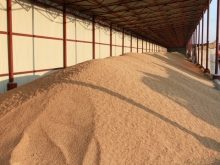 Экспорт зерна запрещать не будут