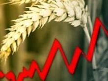 Рост ВВП остановился из-за сельского хозяйства