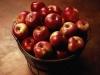 В Подмосковье обнаружили польские яблоки