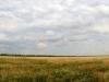 ОАО «Донское» к рекордным урожаям идёт своим путём