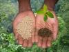 На Ставрополье строят распределительные центры жидких удобрений, чтобы удешевить аграриям доставку.
