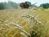 Аграрная партия России призвала правительство устранить барьеры для малого бизнеса на селе.