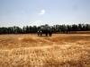 В Москве состоялся всероссийский съезд фермеров