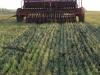 Скоро ли российские аграрии откажутся от пахоты?