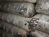 Хуторянин организовал малозатратное производство блоков для выращивания вёшенки