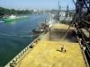 Донские фермеры собирают подписи против действующих пошлин на экспорт зерна