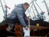 фитосанитарный контроль в порту